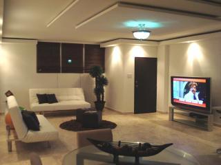 Big Apartment, BIg Pool, WIFI, Great Area - Isla Verde vacation rentals