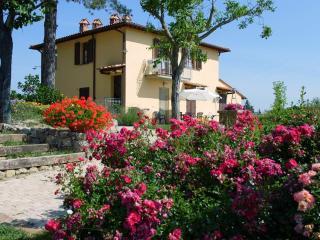 Appartamento  TULIPANO a San Gimignano con piscina - Ulignano vacation rentals
