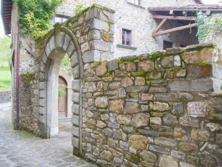 1 bedroom Apartment with Garden in San Romano in Garfagnana - San Romano in Garfagnana vacation rentals