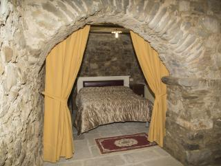 Nice Condo with Garden and Short Breaks Allowed - San Romano in Garfagnana vacation rentals