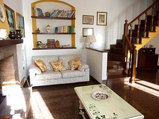 Ortensia Holiday Stone Farmhouse in Pietrasanta - Pietrasanta vacation rentals