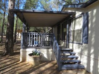 Cool Escape in the Pines - Show Low vacation rentals
