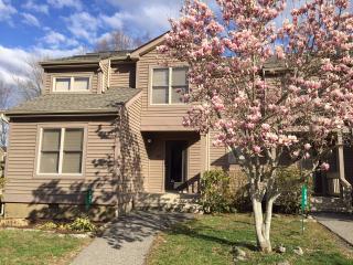 Executive Bear Retreat: Pool Spa HDTV WiFi - Shawnee on Delaware vacation rentals