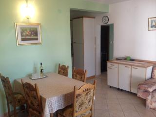 3 bedroom Condo with Internet Access in Kustici - Kustici vacation rentals