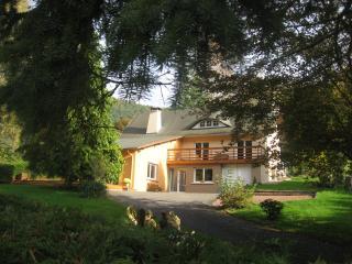 Maison de vacances en Alsace Le Wineck **** - Niederbronn-Les-Bains vacation rentals