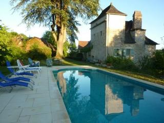 Old domaine near Dordogne 14p, view, heated pool - Cazillac vacation rentals