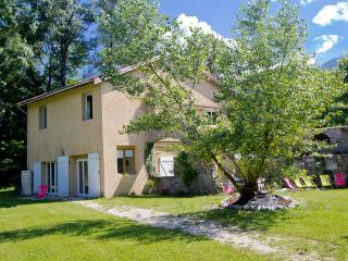 Great House for 10 guests in the Alps - Vizille vacation rentals