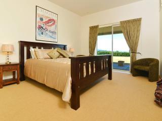 Mountain View Villa - Villa + Annex - Blenheim vacation rentals
