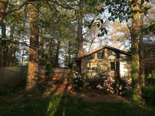 Cozy House with Deck and A/C in Asheville - Asheville vacation rentals