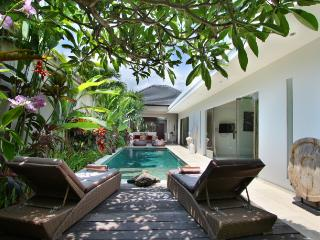 Fabulous Contemporary Villa Seminyak - Seminyak vacation rentals