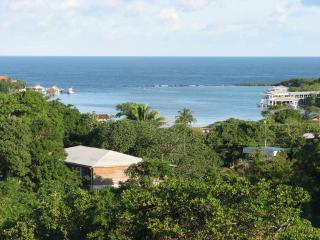 Large Private Home Short Walk to West End - West End vacation rentals