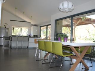 Perfect family villa, best location near Tel aviv - Herzlia vacation rentals