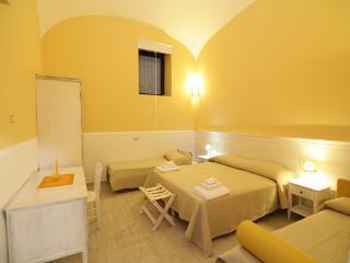 B&B & Garden 2 near Pompeii Oplontis Vesuvius Neaples & Amalfi coast - Torre Annunziata vacation rentals