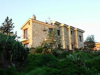 Makryiannis country house - Kalavasos vacation rentals