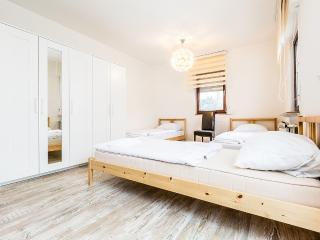 B6 Huge house in Bergisch Gladbach Gronau - Bergisch Gladbach vacation rentals