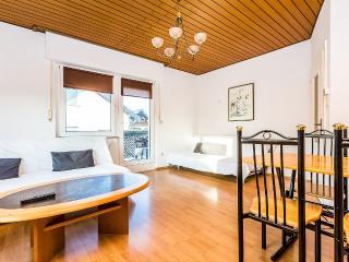 T11 Huge apartment with 3 rooms in Troisdorf - Troisdorf vacation rentals