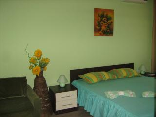 Spacious Resort with Internet Access and Refrigerator - Kranevo vacation rentals