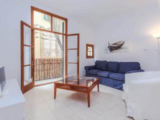 Quintessential apARTment for six - Palma de Mallorca vacation rentals