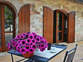 La pietra Rosa The greate holidays in Assisi - Assisi vacation rentals