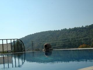 Traditional Turkish Villa with Private Pool - Akyaka vacation rentals