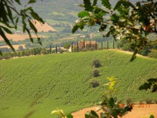 """Appartamento vista mare e monti """"Il Pampino"""" - Montefiore dell'Aso vacation rentals"""