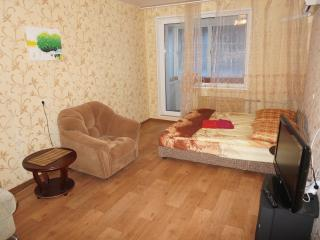 1 bedroom Condo with Internet Access in Saint Petersburg - Saint Petersburg vacation rentals