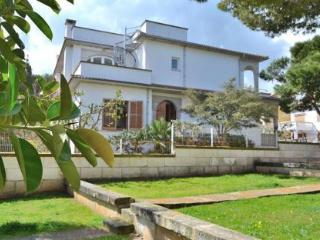 071 Spacious holiday home (SUMMER ALL INCLUSIVE) - Ca'n Picafort vacation rentals