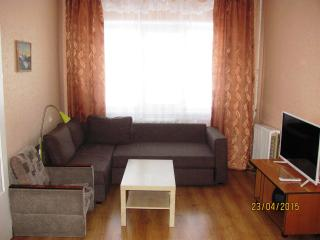 Nice Condo with Internet Access and Central Heating - Murmansk Oblast vacation rentals