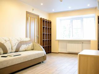 Spacious two room apartment close to downtown - Nizhniy Novgorod vacation rentals