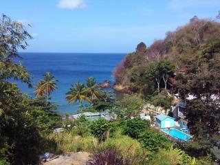 Nice 1 bedroom Condo in Castara - Castara vacation rentals