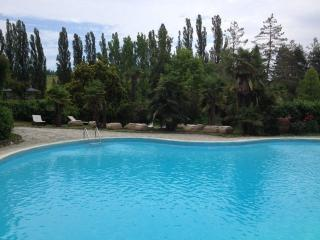 Nice Condo with Internet Access and Shared Outdoor Pool - Tagliolo Monferrato vacation rentals