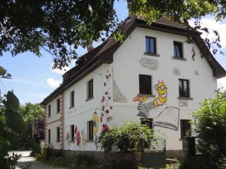 """Ferienhaus """"Buchhaus""""  (das mit den 5  Sternen) - Kirchenlamitz vacation rentals"""