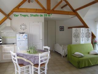 Ker Tropic studio au 1er étage avec jardin en RDC - Baden vacation rentals