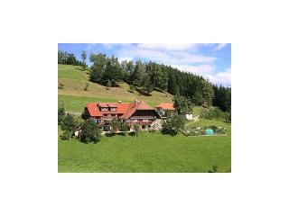 Vacation Apartment in Hausach - 753 sqft, 2 bedrooms, max. 4 People (# 7423) - Hausach vacation rentals
