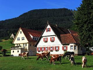 Vacation Apartment in Oppenau - 861 sqft, 3 bedrooms, max. 6 persons (# 7430) - Oppenau vacation rentals