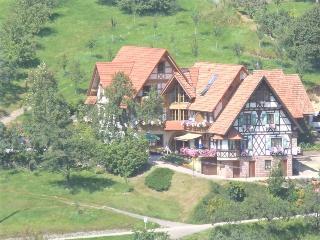 Guest Room in Seebach (Baden) -  (# 7432) - Seebach vacation rentals