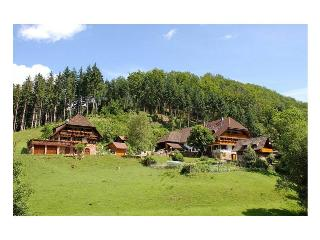 Vacation Apartment in Gengenbach - 538 sqft, 1 bedroom, max. 4 People (# 7474) - Gengenbach vacation rentals