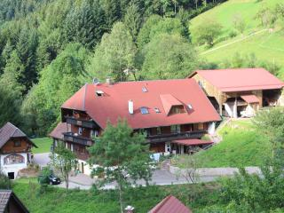 Vacation Apartment in Bad Peterstal-Griesbach - up to 5 persons. (# 7484) - Bad Peterstal-Griesbach vacation rentals