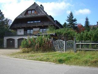 Vacation Apartment in Feldberg - 1453 sqft,  (# 7517) - Neuglashutten vacation rentals