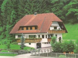 Vacation Apartment in Bad Rippoldsau-Schapbach - 743 sqft, 1 bedroom, max. 4 People (# 7518) - Bad Rippoldsau-Schapbach vacation rentals