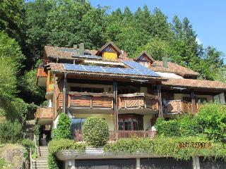 Vacation Apartment in Schiltach - 700 sqft, 1 bedroom, max. 3 people (# 7535) - Schiltach vacation rentals