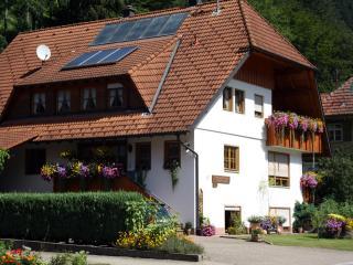 Vacation Apartment in Bad Rippoldsau-Schapbach -  (# 7538) - Bad Rippoldsau-Schapbach vacation rentals