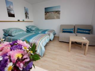 Vacation Apartment in Freiburg im Breisgau - 280 sqft, 1 bedroom / living room (# 7681) - Freiburg im Breisgau vacation rentals