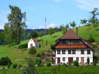 Vacation Apartment in Oberharmersbach -  (# 7691) - Oberharmersbach vacation rentals