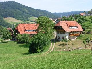 Vacation Apartment in Nordrach - 915 sqft, 2 bedrooms, max. 5 people (# 7694) - Nordrach vacation rentals