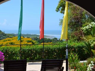 Casa Buena Vida: Get it All! Ocean and Jungle View - Ojochal vacation rentals