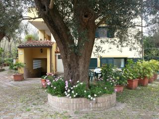 villagemma/LIMONE in villa a 300 m dalla spiaggia - Policastro Bussentino vacation rentals