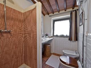 204 bedroom Condo with Internet Access in Serre di Rapolano - Serre di Rapolano vacation rentals