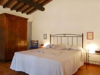 Apartment Glicine 2207 - Colle di Val d'Elsa vacation rentals