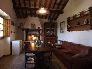 Bright 2 bedroom Apartment in Colle di Val d'Elsa with Garden - Colle di Val d'Elsa vacation rentals